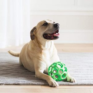 Dog Ball-petsourcing