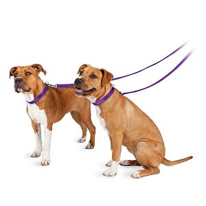 PetSafe Nylon Dog Leash-petsourcing
