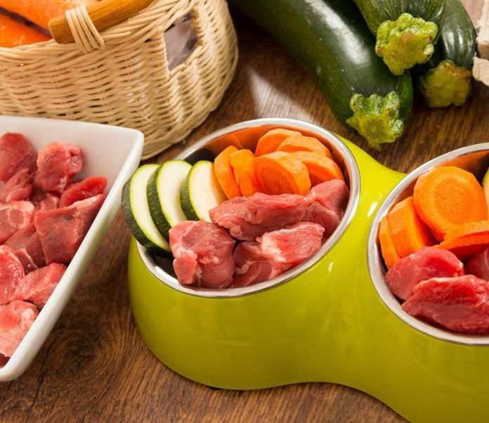 Should I Feed My Dog or Cat a Raw Diet-petsourcing