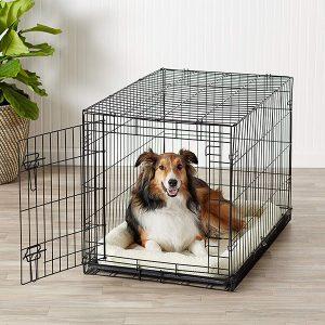 Single Door & Double Door Folding Metal Dog Crate-petsourcing