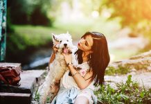 How to Find the Perfect Pet Sitter-petsourcing