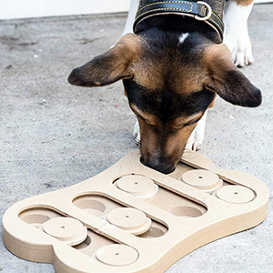 dog's toy-petsourcing