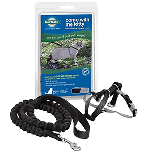 Harness for dogs-petsourcing