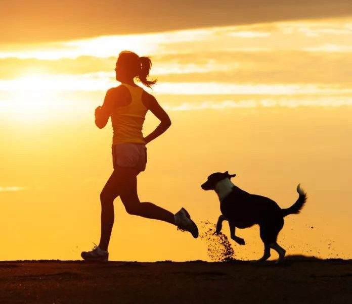 How to Run With Your Dog-petsourcing
