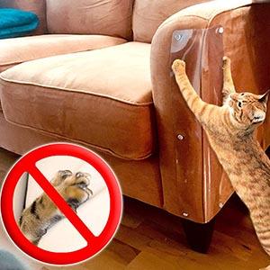 Pet Scratch Shields-petsourcing