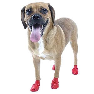 dog boot-petsourcing